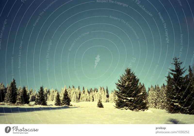 200% Winter Himmel Natur blau Pflanze weiß Sonne Baum Einsamkeit Landschaft Winter kalt Umwelt Berge u. Gebirge Gefühle Schnee Stimmung