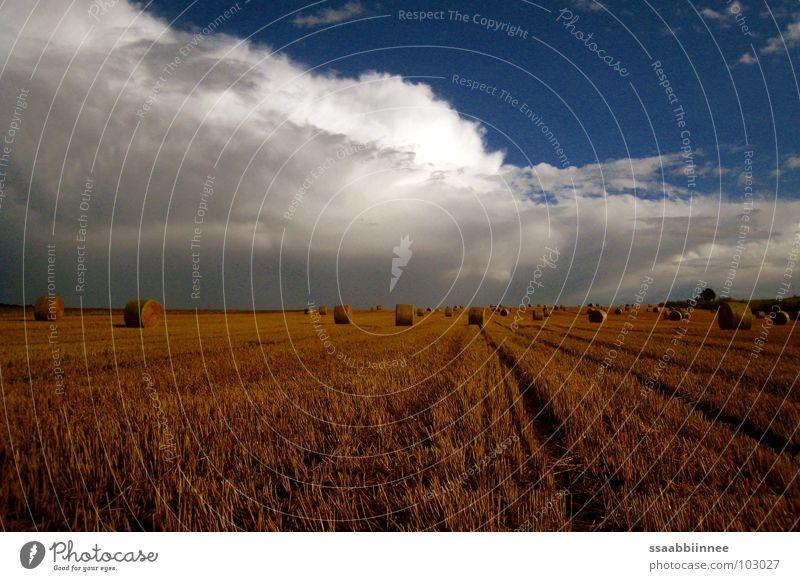 Nach dem Regen Himmel Sommer Wolken Wärme Physik Duft Ernte Kornfeld Stroh Strohballen Stoppelfeld