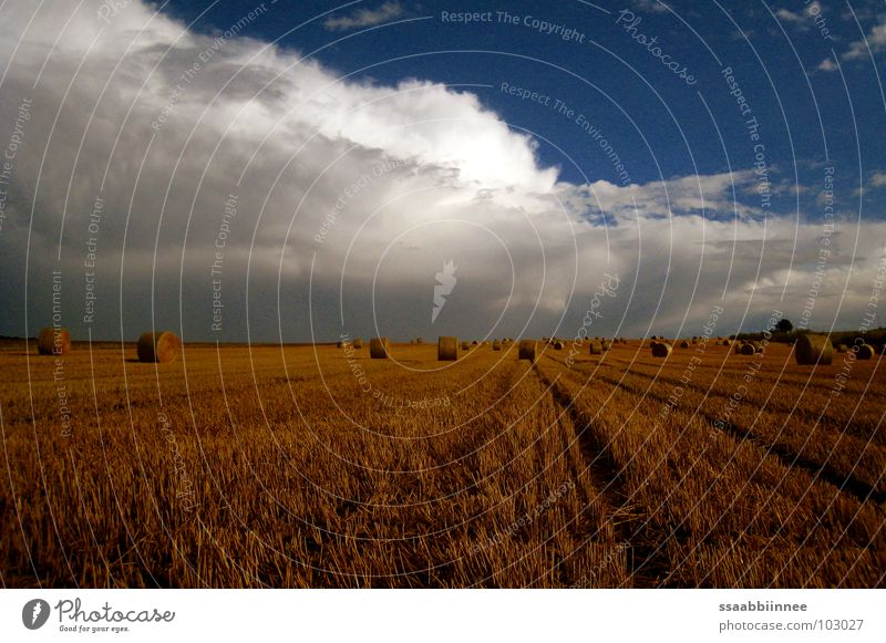 Nach dem Regen Strohballen Wolken Sommer Ernte Physik Duft Stoppelfeld Himmel Kornfeld Wärme