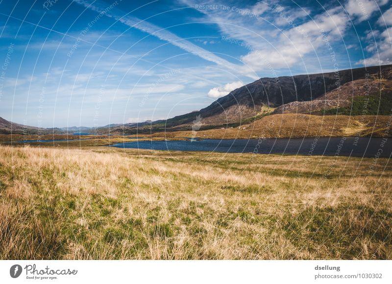 ganz viel gegend. Umwelt Natur Landschaft Himmel Wolken Sommer Schönes Wetter Wiese Feld Hügel Felsen Berge u. Gebirge Gipfel Schlucht Glen Affric Seeufer