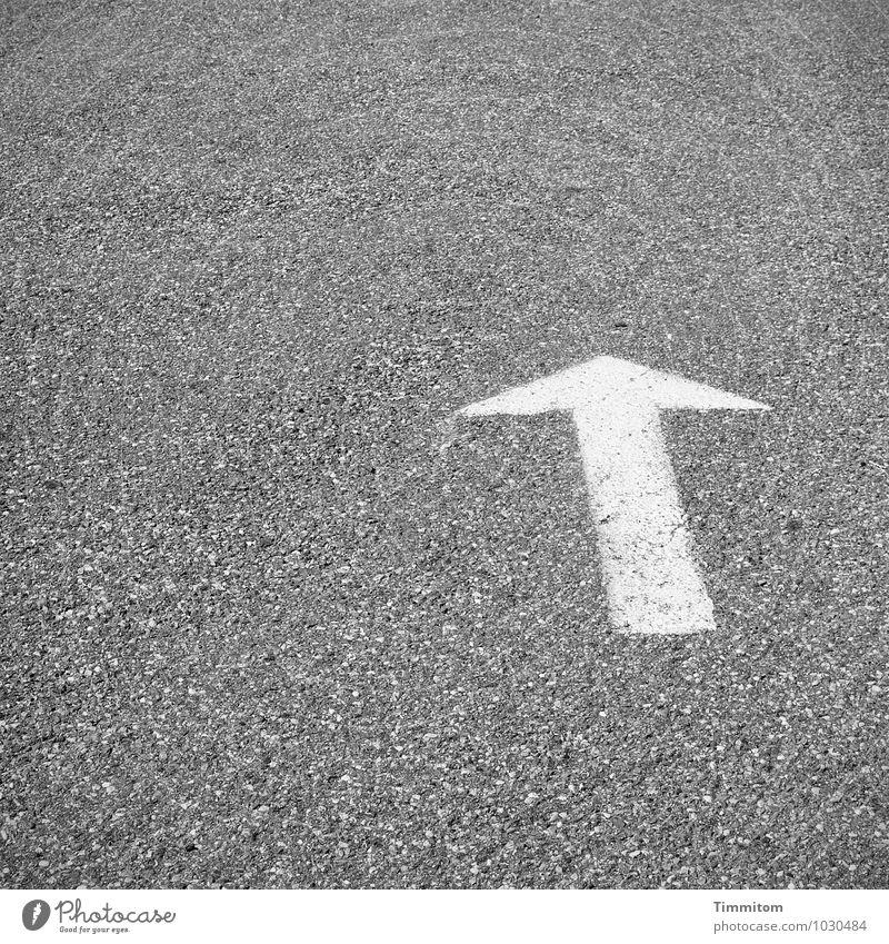 Tschüss, liebe Anne! Und ein Tipp für Deinen Weg. Straße Wege & Pfade Pfeil Schilder & Markierungen einfach grau weiß deutlich Asphalt Hinweisschild