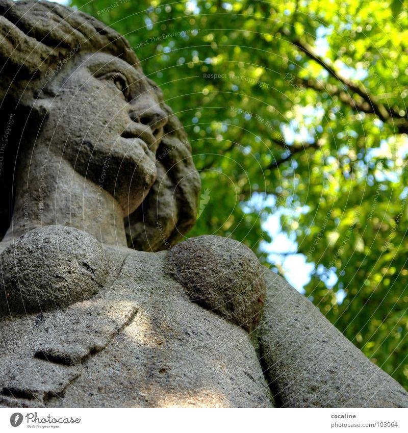 Das Innere zählt Mensch Frau Natur Baum Blatt Stein Brust Denkmal Momentaufnahme Wahrzeichen bewegungslos
