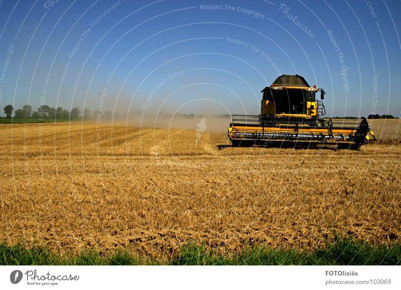landleben Feld Mähdrescher Staub aufwirbeln Gerste Kornfeld Landarbeiter Landwirt Wiese Halm Baum Getreideernte Heuballen Stroh Strohballen Blauer Himmel
