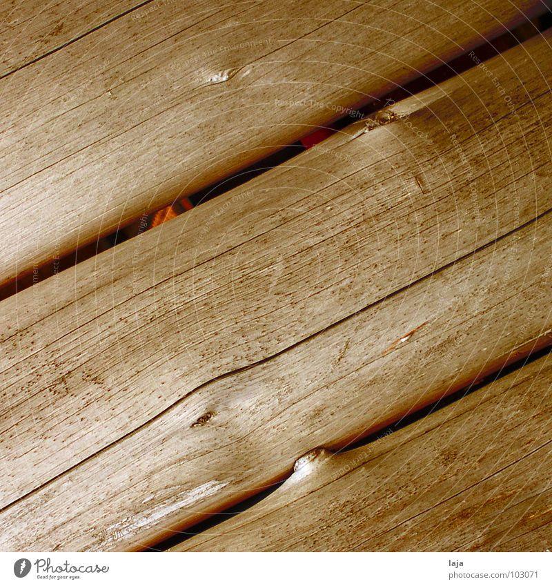 Bis sich die Balken biegen Holz braun Schiffsplanken Baum Vogelperspektive Herbst Natur Freiheit Maserung Holzbrett Strukturen & Formen natürlich