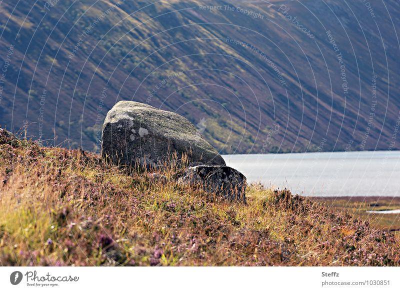 Spätsommer in Schottland nordisch karg nordische Natur nordische Romantik schottisches Wetter nordische Wildpflanzen schottischer Sommer Sommer in Schottland