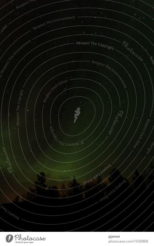 Sterne Himmel Natur Ferien & Urlaub & Reisen Pflanze grün Baum Landschaft Ferne Winter dunkel schwarz Berge u. Gebirge Herbst grau Horizont Eis