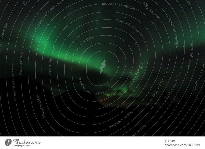 Nordlicht Abenteuer Ferne Winter Natur Himmel Wolkenloser Himmel Nachthimmel Stern Horizont Herbst Schönes Wetter Schnee Fjord Ferien & Urlaub & Reisen dunkel