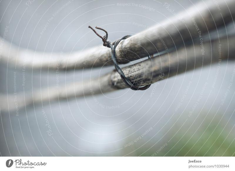 #1030944 Freizeit & Hobby Häusliches Leben Garten Herbst Holz Partnerschaft Trennung Zusammenhalt Verbindung Draht Zwang paarweise parallel einheitlich