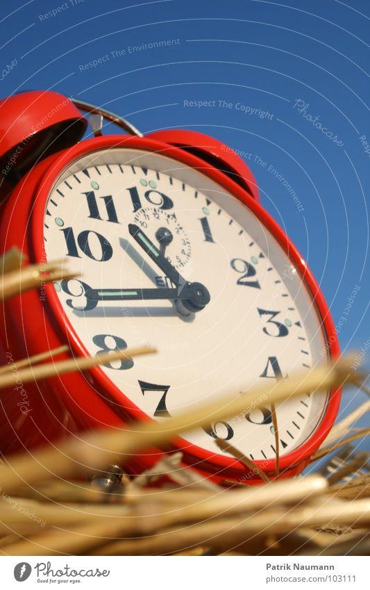 Erntezeit III Wecker Uhr ticktack rot Ziffern & Zahlen Stroh Landwirtschaft ländlich harmonisch Uhrenzeiger Himmel blau Kontrast Außenaufnahme
