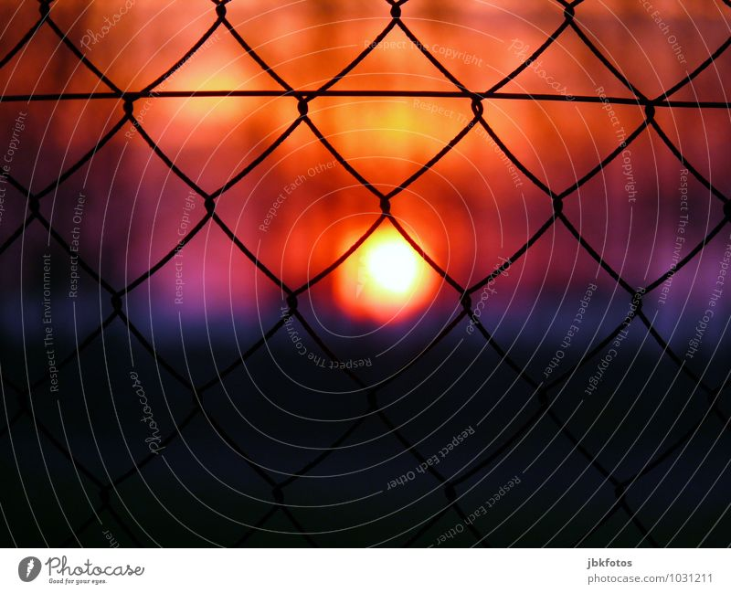 Aus/Eingesperrt Umwelt Kitsch Sonnenuntergang Sonnenlicht Maschendrahtzaun Zaun einsperren geschlossen aussperren Drahtzaun Außenaufnahme Abend Dämmerung