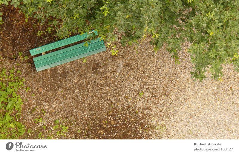 Ein Plätzchen im Grünen ... grün Baum Sommer Blatt Einsamkeit Erholung Denken sitzen Platz Bank Aussicht entdecken Möbel Müdigkeit Geruch Heimat