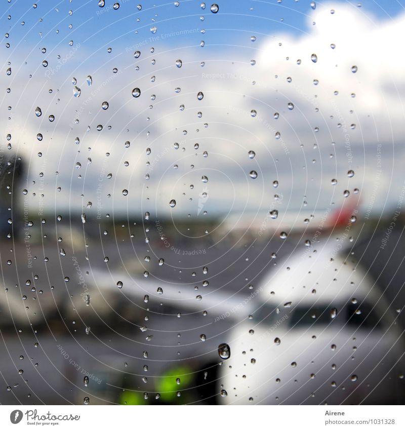 die Fliege machen Ferien & Urlaub & Reisen Wassertropfen Regen Luftverkehr Flugzeug Flughafen Flugplatz Flugzeuglandung Flugzeugstart Abflughalle