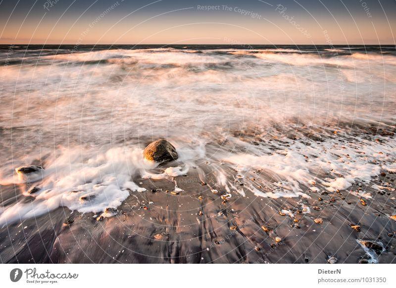Fels in der Brandung Himmel weiß Wasser Meer Landschaft Wolken Strand Winter gelb Küste Stein braun Sand Felsen Horizont Erde