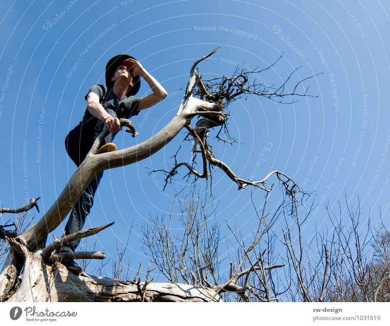 AusBlick Mensch Natur Ferien & Urlaub & Reisen Jugendliche Mann Sommer Sonne Baum Erholung ruhig Freude Junger Mann 18-30 Jahre Ferne Wald Erwachsene