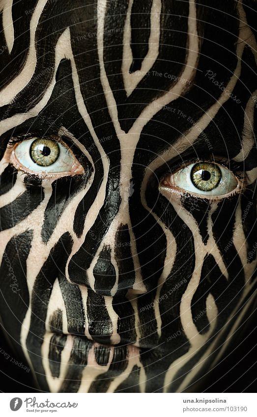 tigerpferd Farbe schwarz Auge außergewöhnlich Streifen Fell Maske bizarr gestreift Bildausschnitt bemalt Anschnitt Tarnung Tigerfellmuster Gesichtsausschnitt Tarnfarbe