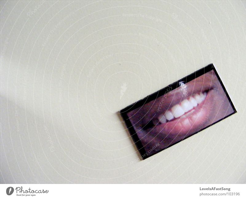 smile grinsen Magnet Hinweisschild black white teeth picture face happy lips