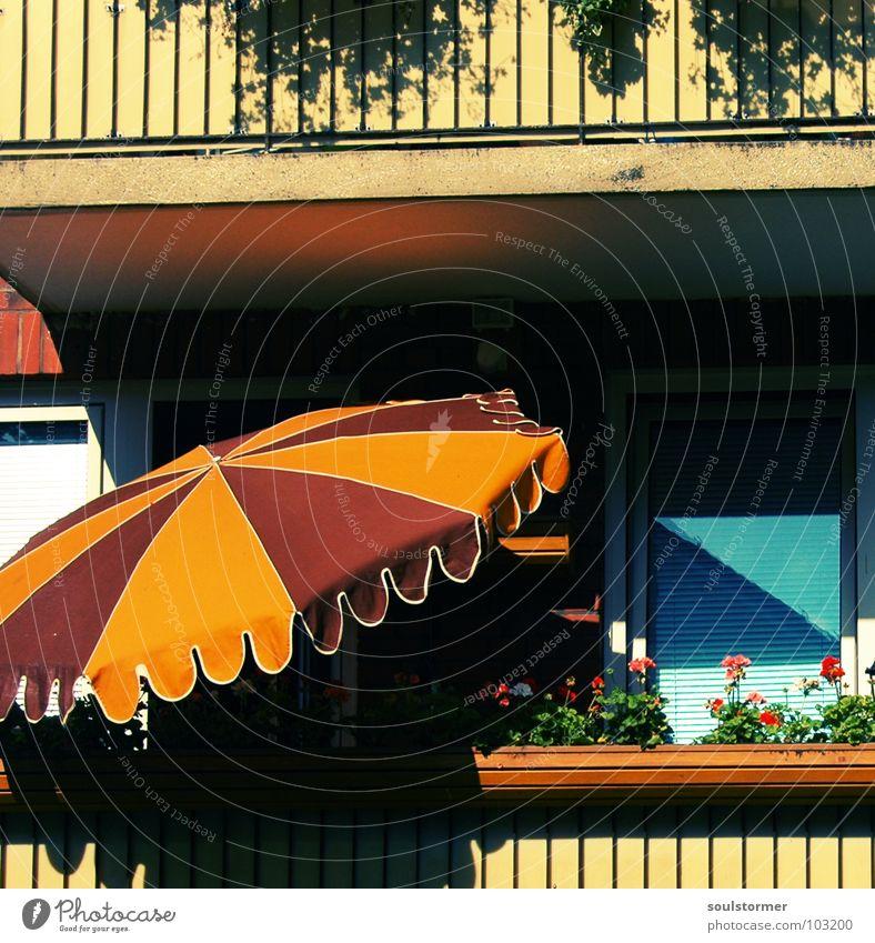 Urlaub in Balkonien Stadt Blume ruhig Erholung Fenster Geländer Sonnenschirm obskur Mittagessen Wetterschutz Grossstadtromantik