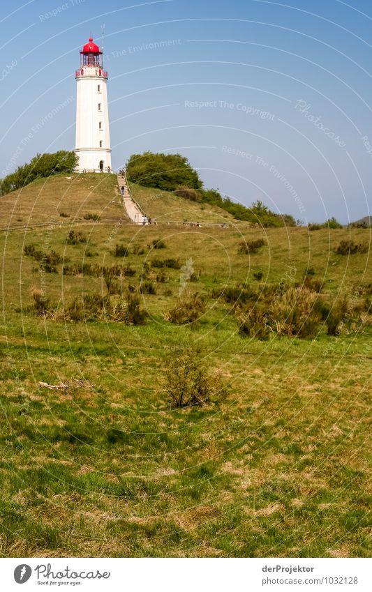 Gut sichtbar: Leuchtturm auf Hiddensee Natur Ferien & Urlaub & Reisen Pflanze Landschaft Ferne Umwelt Küste Frühling Freiheit Freizeit & Hobby Feld Tourismus