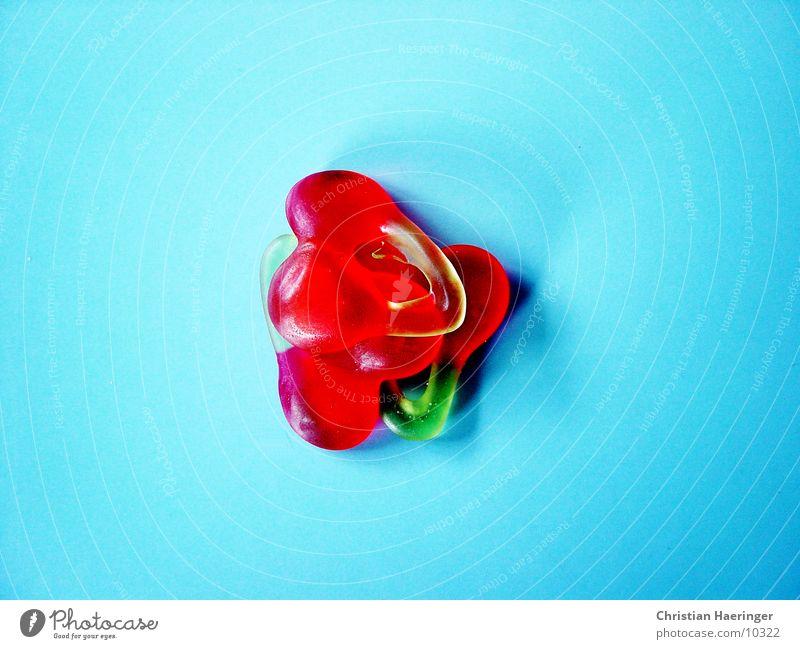 drei fröhliche kirschen blau grün rot Kirsche Gummibärchen Weingummi