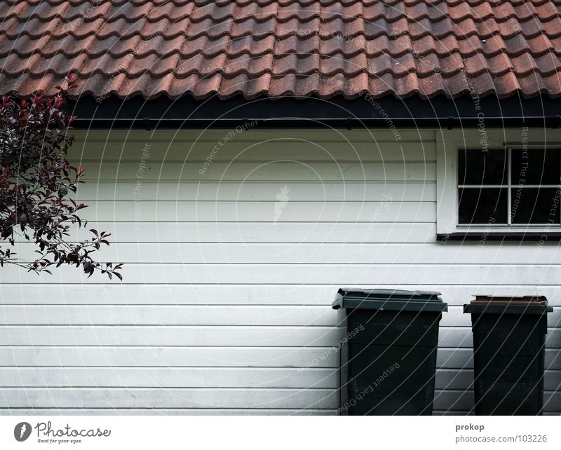 Eigentum? Baum Haus Fenster Holz Trauer Sicherheit trist Dach Sauberkeit rein Müll Häusliches Leben Streifen Idylle Verzweiflung Langeweile