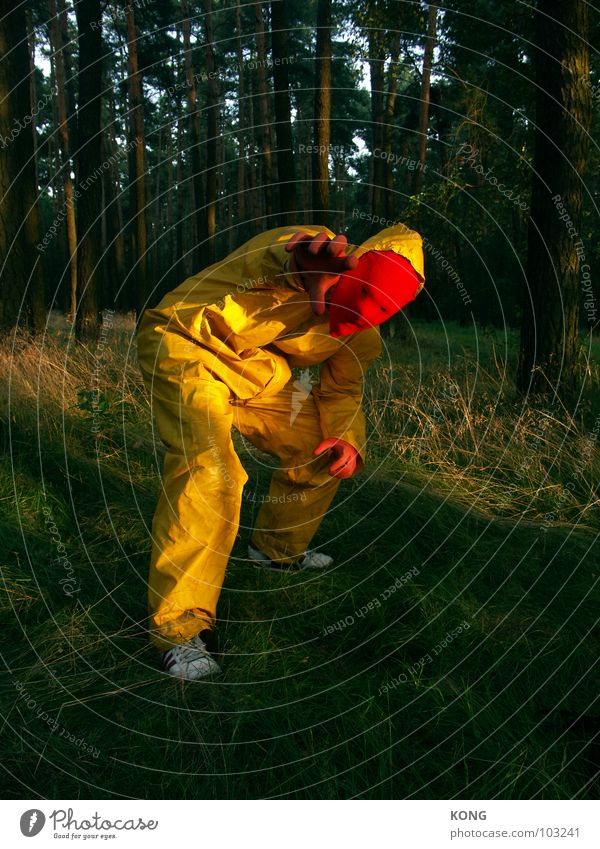 rotkäppchen Natur Freude gelb Wald grau verrückt Macht Maske Konzentration Anzug Knie grau-gelb Schutzanzug