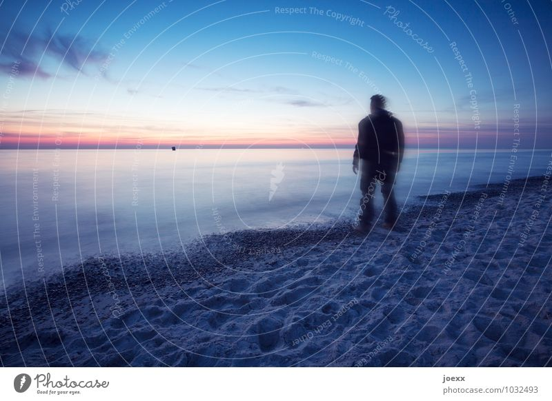 Langsam langsamer Ferne Freiheit maskulin Mann Erwachsene 1 Mensch Himmel Horizont Sonnenaufgang Sonnenuntergang Schönes Wetter Wellen Küste Strand beobachten
