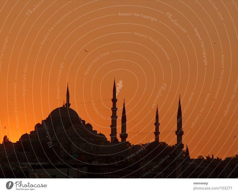 Moschee in Istanbul Sonnenuntergang dunkel Minarett Religion & Glaube Islam Moslem Türkei Asien Europa Bosporus historisch Abend