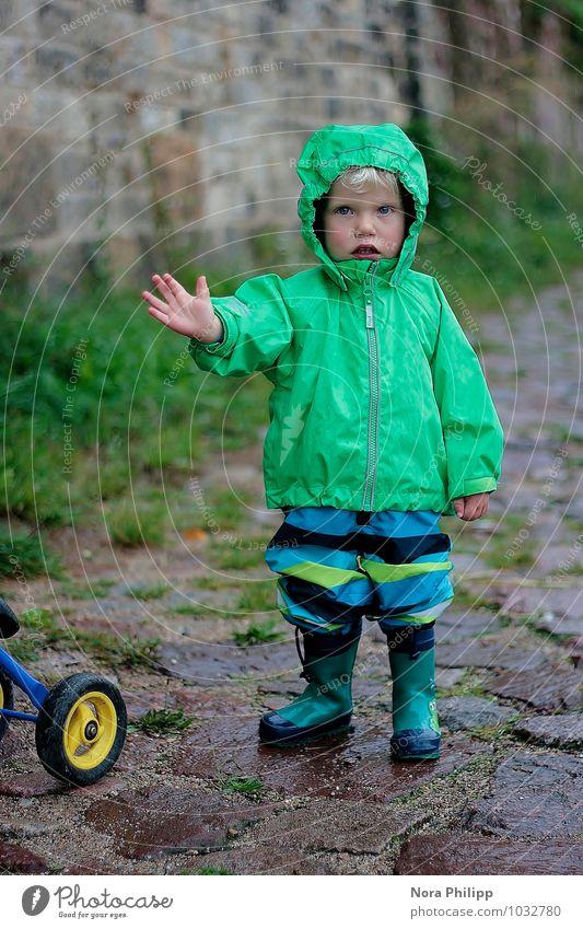 adios! Mensch Kind grün Hand Umwelt Wand Herbst Gras Junge Wege & Pfade Mauer Spielen maskulin Freizeit & Hobby Körper Kindheit