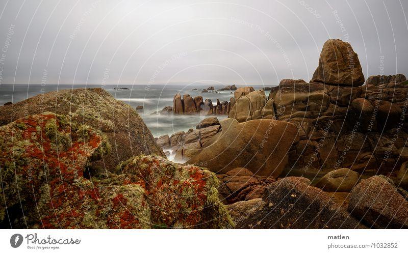 Flechten Natur Landschaft Pflanze Wasser Himmel Wolken Horizont Wetter schlechtes Wetter Sturm Moos Felsen Wellen Küste Fjord Meer braun grau grün rot bizarr