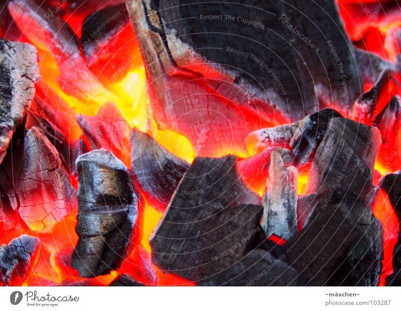Grillkohle Grillen glühen brennen lecker Physik Abendessen Sommer rot gelb heiß Feuer Brand Ernährung legga Wärme Garten Brandasche orange red Funken sparks