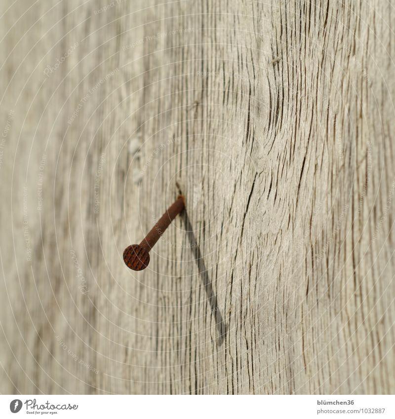 langlebig   Wer wird älter? alt Holz Metall Baustelle fest Holzbrett Rost Verbindung Stahl Handwerk nachhaltig verwittert Nagel standhaft Maserung schlagen