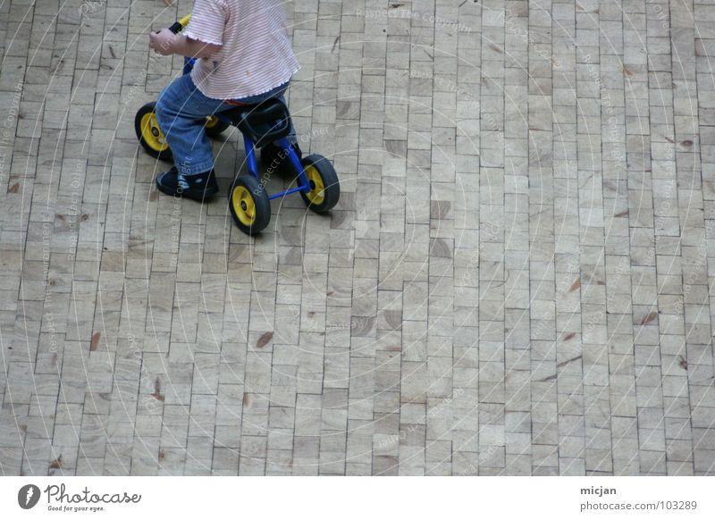 Laurel ¾ Kind weiß rot Freude Straße Spielen oben Junge grau klein Stein lustig Wildtier Platz Verkehr Geschwindigkeit