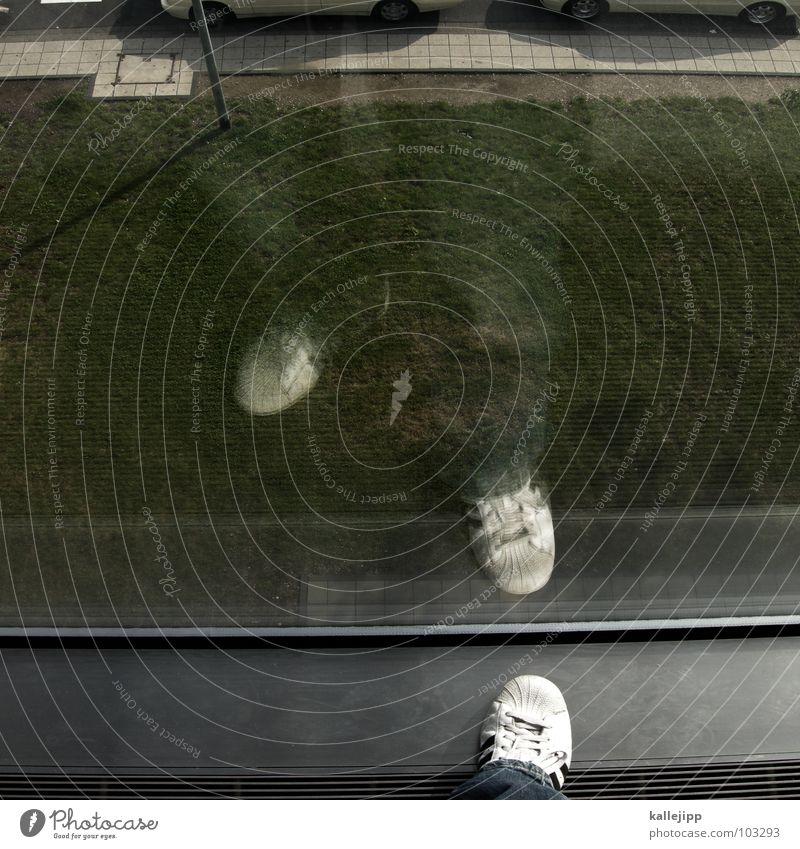 learning to fly Spiegelbild Fenster grün Grünfläche Schuhe Turnschuh weiß Tanzfläche Bürgersteig Reflexion & Spiegelung Aluminium stehen Aussicht Selbstmörder
