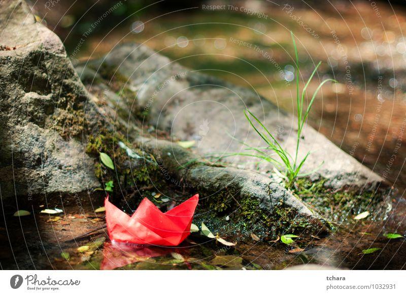 Die große Reise beginnt mit kleinen Schritten. Freude Freiheit Natur Wind Gras Blatt Felsen Fluss Papier Spielzeug rot Idee Nautisches Schiff Papierschiff