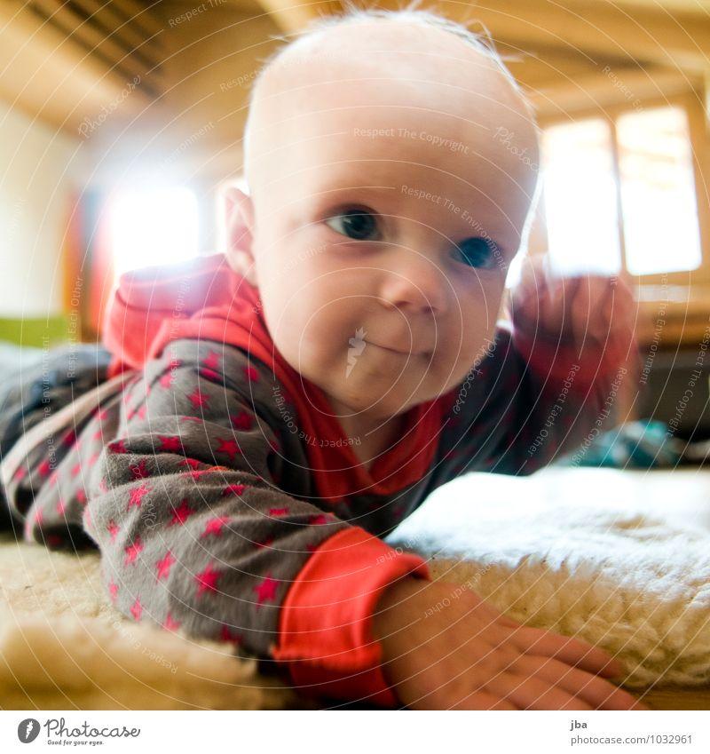 entdecken Mensch Kind Bewegung Spielen Glück Gesundheit Zufriedenheit Kindheit Fröhlichkeit Lächeln Baby beobachten lernen Fitness Coolness Neugier