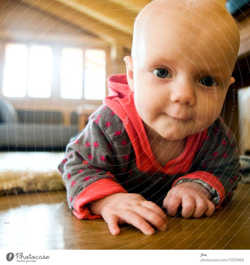 entdecken Zufriedenheit Wohnzimmer Bewegung Kind lernen Mensch Baby Kleinkind Kindheit 1 0-12 Monate Pullover beobachten Fitness krabbeln Lächeln Blick Spielen
