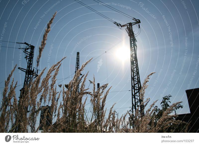sonnenklar schön Himmel weiß Sonne blau Sommer Freude Wolken gelb kalt Erholung Freiheit Wärme Landschaft hell Feld
