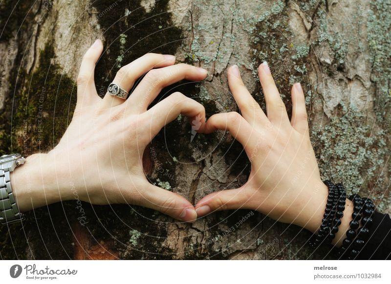 You and I Glück Valentinstag maskulin feminin Frau Erwachsene Mann Paar Hand Finger 2 Mensch 18-30 Jahre Jugendliche Umwelt Frühling Baum Baumstamm Baumrinde
