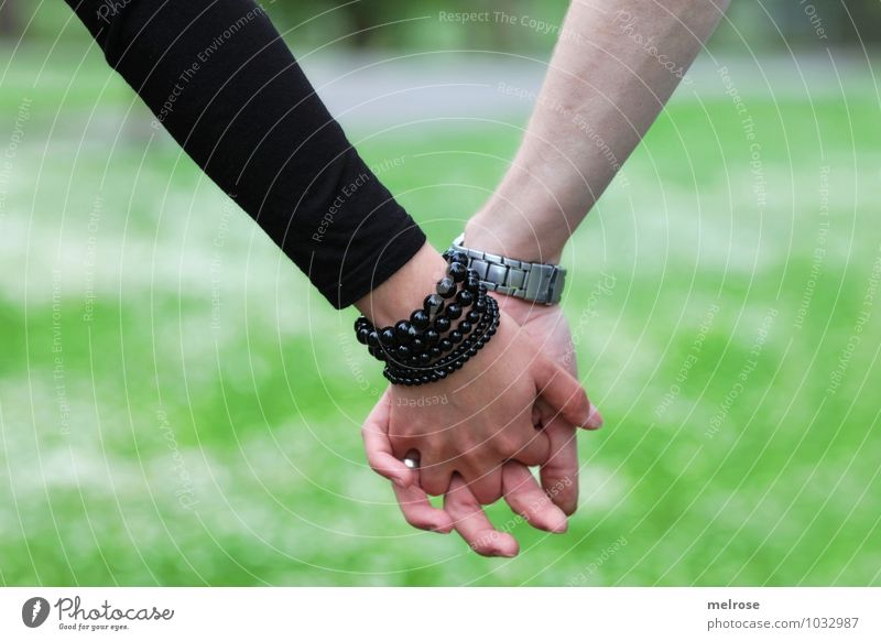 Hand in Hand II Lifestyle Stil Valentinstag Mensch Junge Frau Jugendliche Junger Mann Paar Partner Arme Finger 2 18-30 Jahre Erwachsene Natur Sommer Wiese
