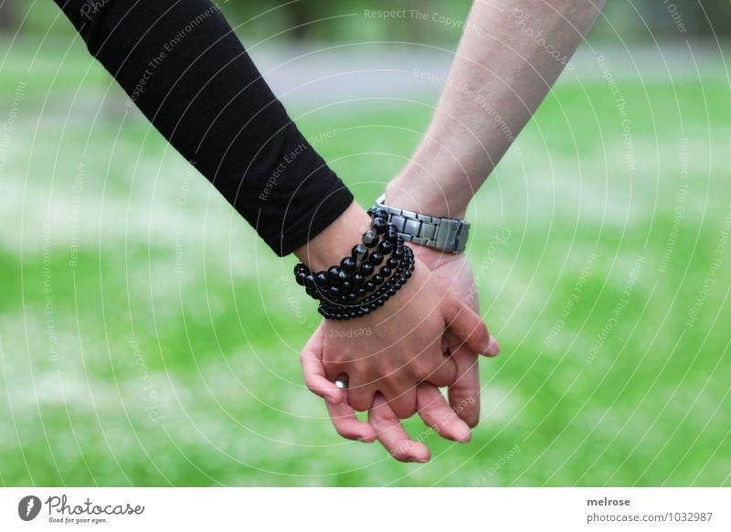 Hand in Hand II Mensch Natur Jugendliche grün weiß Sommer Junge Frau Junger Mann 18-30 Jahre schwarz Erwachsene Gefühle Wiese Liebe Stil