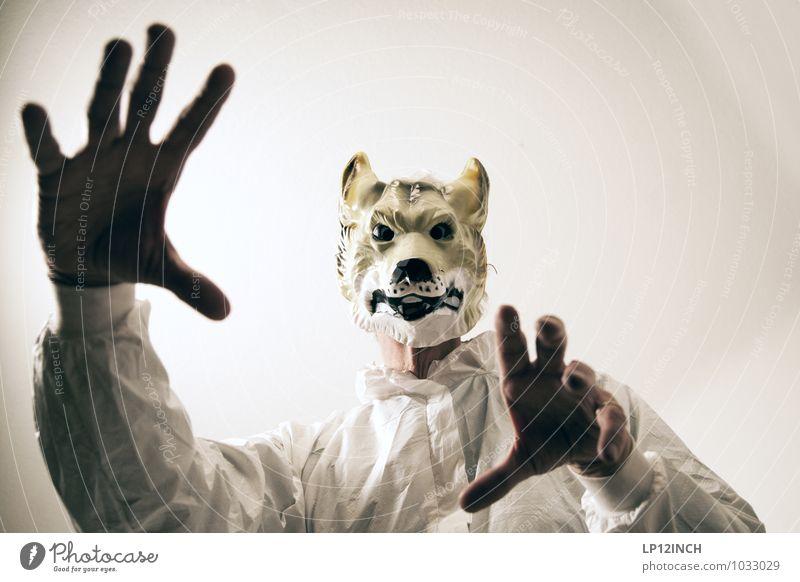 Photo Circus. II Mensch maskulin Junger Mann Jugendliche Erwachsene 1 Tier Wildtier Wolf bedrohlich gruselig rebellisch Stadt Freude träumen Wut Feindseligkeit