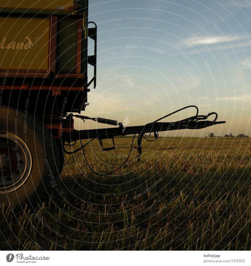 landflucht Landwirtschaft Feld Stoppelfeld Arbeit & Erwerbstätigkeit Landarbeiter Tradition Wagen Kupplung Heimat Amerika Ernte Getreide Gefolgsleute maschiene