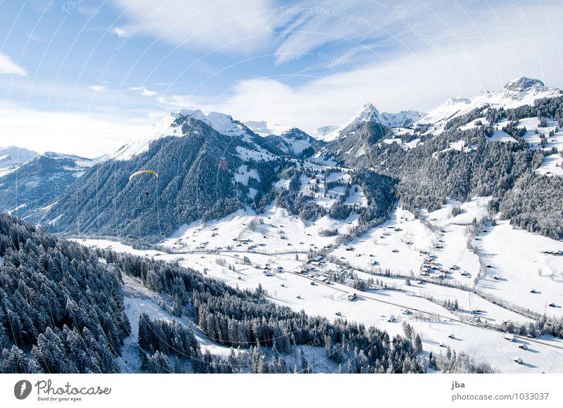 Flug nach Hause Himmel Natur Erholung Landschaft ruhig Winter Wald Berge u. Gebirge Schnee Sport Freiheit Zeit fliegen Luft Freizeit & Hobby Luftverkehr