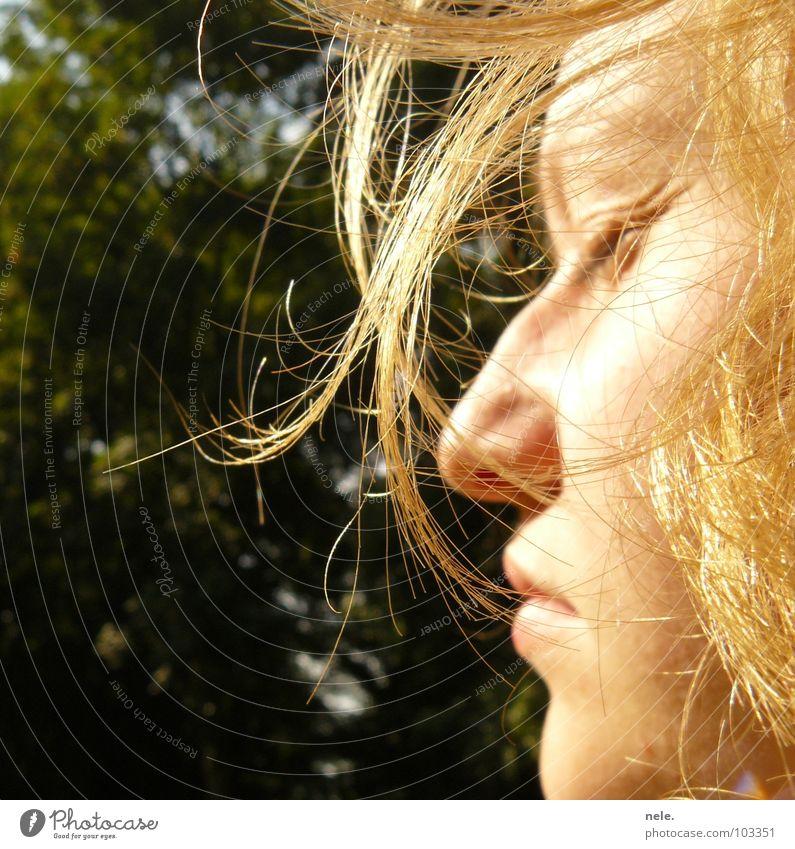 voila Sommer Luft zerzaust blond Physik Licht geschlossene Augen Baum Silhouette Profil Wind Haare & Frisuren genießen Freiheit Sonne Natur Erholung Wärme