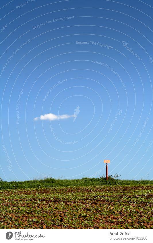 Einsame Wolke Himmel grün blau Sommer Wolken Wiese Gras braun Feld Schilder & Markierungen