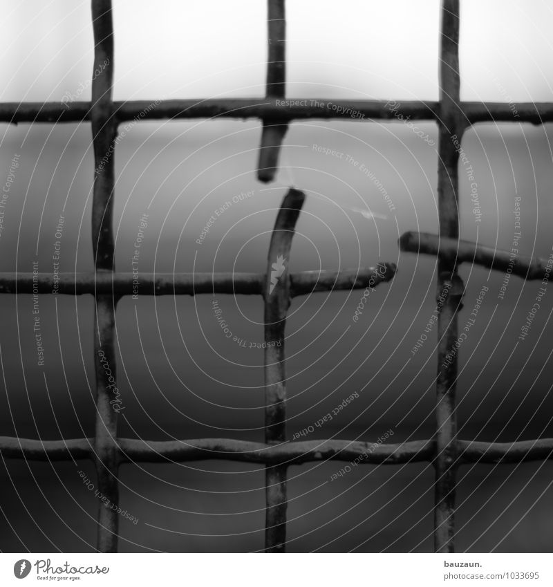 gebrochen. Garten Renovieren Park Zaun Gitter Gitternetz Metall Linie Netzwerk Traurigkeit dunkel eckig kaputt Wahrheit Trauer Schmerz Enttäuschung Einsamkeit