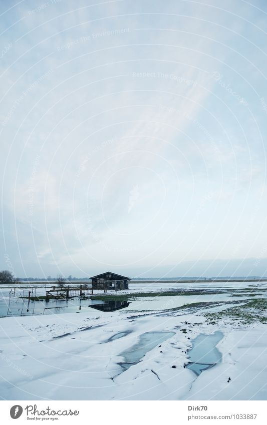 Winterlich Himmel blau Wasser weiß Baum Einsamkeit Landschaft Wolken Ferne Winter schwarz Umwelt Wiese Gras Schnee grau