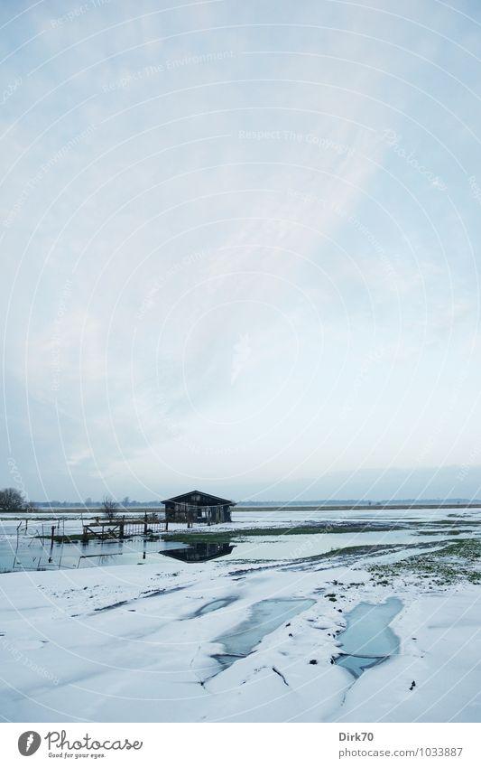 Winterlich Landwirtschaft Forstwirtschaft Umwelt Landschaft Wasser Himmel Wolken Horizont Schönes Wetter Eis Frost Schnee Baum Gras Wiese Feld Moor Sumpf Teich