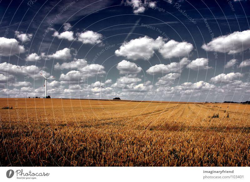 this hard land Himmel Sommer Wolken Wiese Landschaft Feld Bauernhof Getreide Windkraftanlage Länder Landwirtschaft Korn Weizen Juli
