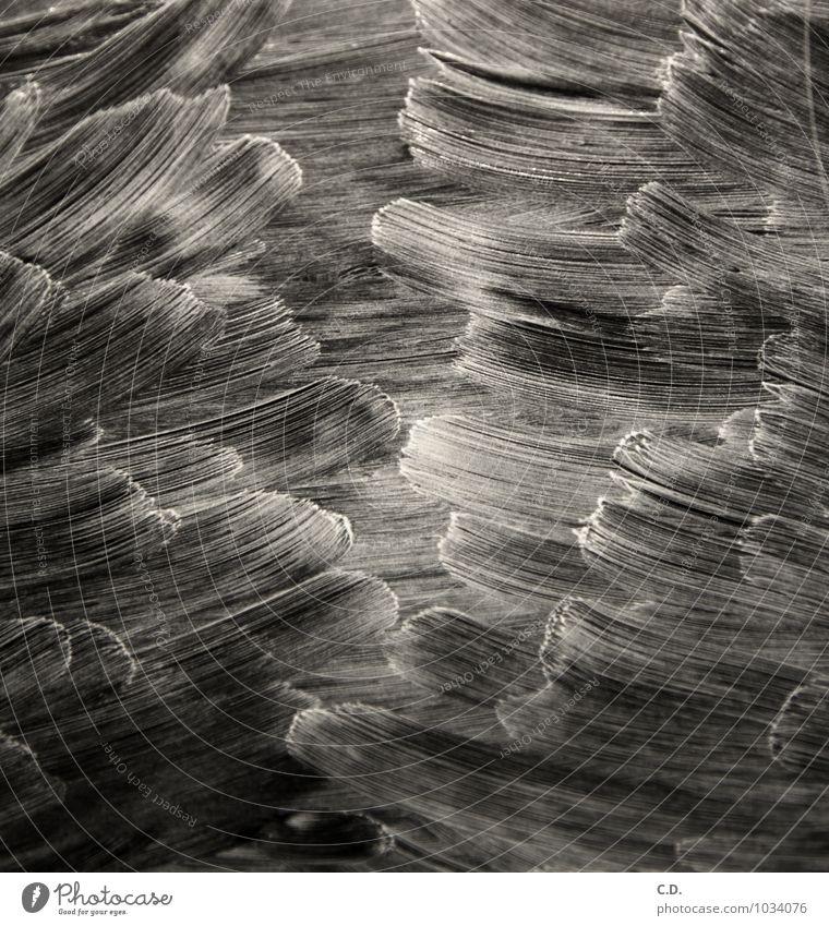 Reiniger auf Cerankochfeld II weiß schwarz Bewegung Glas Kunststoff Sturm Wellenform zügellos